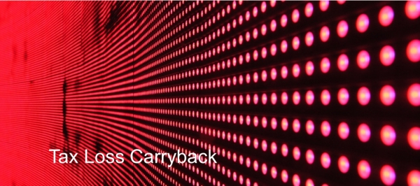 Tax Loss Carryback - Global Insights